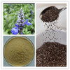 Herb Medicine Chia Seed Extract Powder