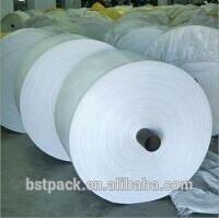 Pp tela rafia / saco de embalaje 50 KG / 25 KG