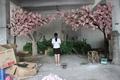 nuevo diseño del jardín de la boda del arco uso de flor de cerezo ramas de flores de madera puenteenarco para la venta