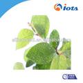 Tipos de herbicidas agrícola silicone surfactante IOTA2000 usado como um spray modifier