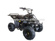 49cc 110cc 125cc 150cc sports atv