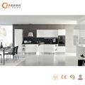 eo-- ودية مستوى عال المجهزة المطابخ الحديثة المصنوعة في الصين( cdy-- s606)
