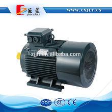 permanent magnet asynchronous motor