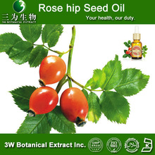 100% Natural Rose hip seed oil, rose hip oil ,Rose Hips Extract