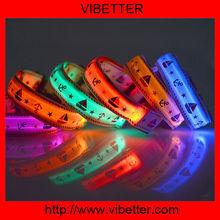 Waterproof led dog/pet collar series and human charm