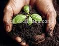 Leonardita lenta liberação de ácidos húmicos 70% fertilizante orgânico granulado para campo de golfe