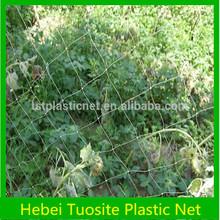 HDPE/Nylon Anti Bird Protection Netting with UV stabilizer