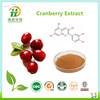 Hot Sale Cranberry Powder,Cranberry Fruit Powder,Cranberry Juice Powder