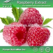Plant Extract Raspberry Ketone Slimming Product/98% Raspberry Ketone