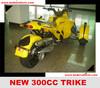 Smart Trike 250CC
