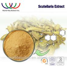 Scutellaria extract free sample Chinese herb medicine anti-inflammatory 85%~95% scutellariae extract baicalein