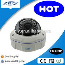 PLV Audio Support IR ball type ip cctv dome Camera