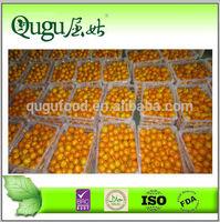 2014 New crop best Fresh & Sweet Oranges ponkan