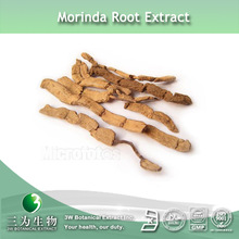 Radix Morindae Officinalis Extract 10:1In Fine Powder