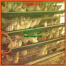 galvanized steel wire quail cages for quail farm