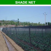 Hot sale!!!swimming pool cover, ginseng shade cloth in roll,black color agricultural used sunshade net