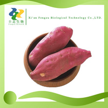 Hot sale antioxidant fruits extract sweet purple potatoes