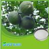 Factory supply high quality Citrus aurantium Fluid Extract
