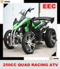 250CC Water Cooled Racing EEC Quad ATV