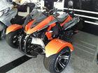 EEC Certification 3 Wheel Motor trike