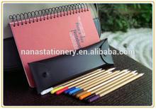 cheap simple pencil collect bag NS-BD1002