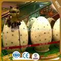 2014 montagem ao ar livre ovo de dinossauro de brinquedo crescer