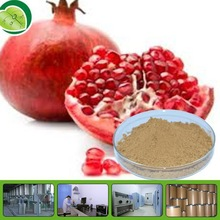 pomegranate peel extract powder pomegranate peel extract