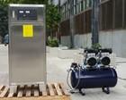 100g oxygen feed ozone generator for papermaking industry ozonizer