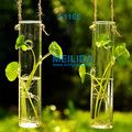 Cilindro de vidrio florero colgante para el arreglo floral