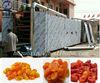 Best seller! high quality and efficient fruit mesh belt dryer