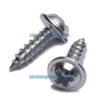 Philips screws flange head 3 10 mm sliver