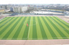 Artificial Lawn for Small Soccer Field 45mm Monofilament