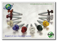 Non standard screw, special screw according to drawing