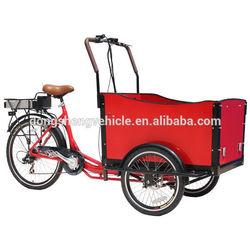 family 3 wheel bicycle electric wheel