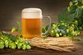 Yantai zhongsheng importação& exportação fornecer americano de malte de cevada para a cerveja no preço mais barato de matéria estranha %: 0.92