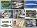 pescados y mariscos frescos para la venta