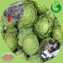 Artichoke Prices/Cynarin Artichoke Extract/Jerusalem Artichoke Powder