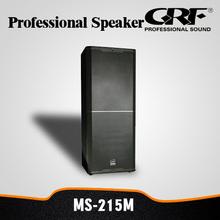 Professional Dual 15 Inch Full Range Live Speaker System