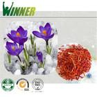 pure organic Iranian saffron. anti depression and aging
