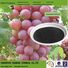 Alghe concime ascophyllum nodosum per uva/solubile in acqua estratto di alghe organico(NPK)/alga fertilizzante bio