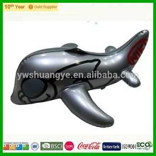 PVC inflatable plane
