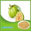 china supplier garcinia cambogia fruit extract