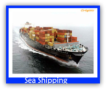 ocean shipping to Celle--Frank ( skype: colsales11 )