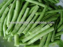 BRC,KOSHER,HALAL IQF asparagus bean cut