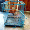 Hebei manufacturer supply high quality dog cage