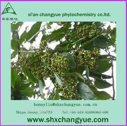 pure natural Hovenia dulcis Thunb P.E.