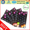 China/Many Sizes Nested Plastic Fruit Packing Trays 30 holes