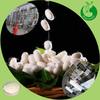 2014 Wholesale Silk Powder,Silk Fibroin Powder,Silk Extract Powder