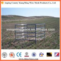 Steel Metal Type farm gates and panels