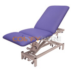 Coinfy ELX1003 Japanese Massage Bed